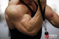 9 // Treniruotė bicepsui